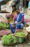 Women selling shallots and herbs in a street, Madurai, Tamil Nadu,